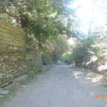 Rokharv143